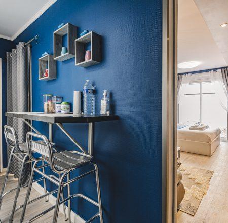 Mange debout-patio-appartement- spa- privatif-terrasse-reims-19